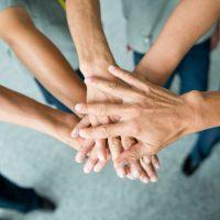 Workshops thématiques et team building
