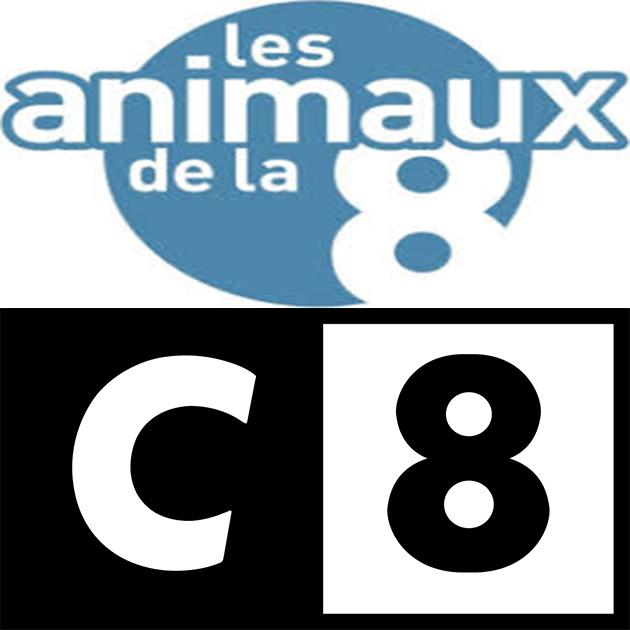 MBEM DANS LES ANIMAUX DE LA 8 SUR C8